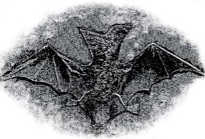 El vampir de la família Agullana